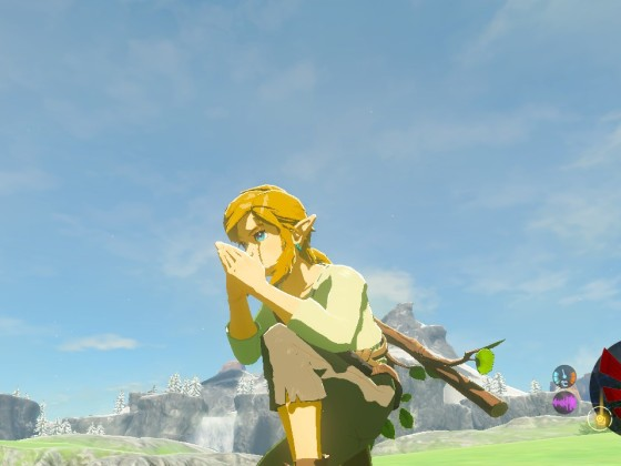 Link doing the bird whistling